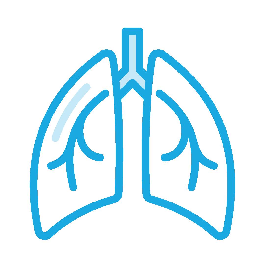 Pulmonary Medical Software, AMS